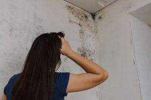Les différents signes pour détecter l'humidité les murs