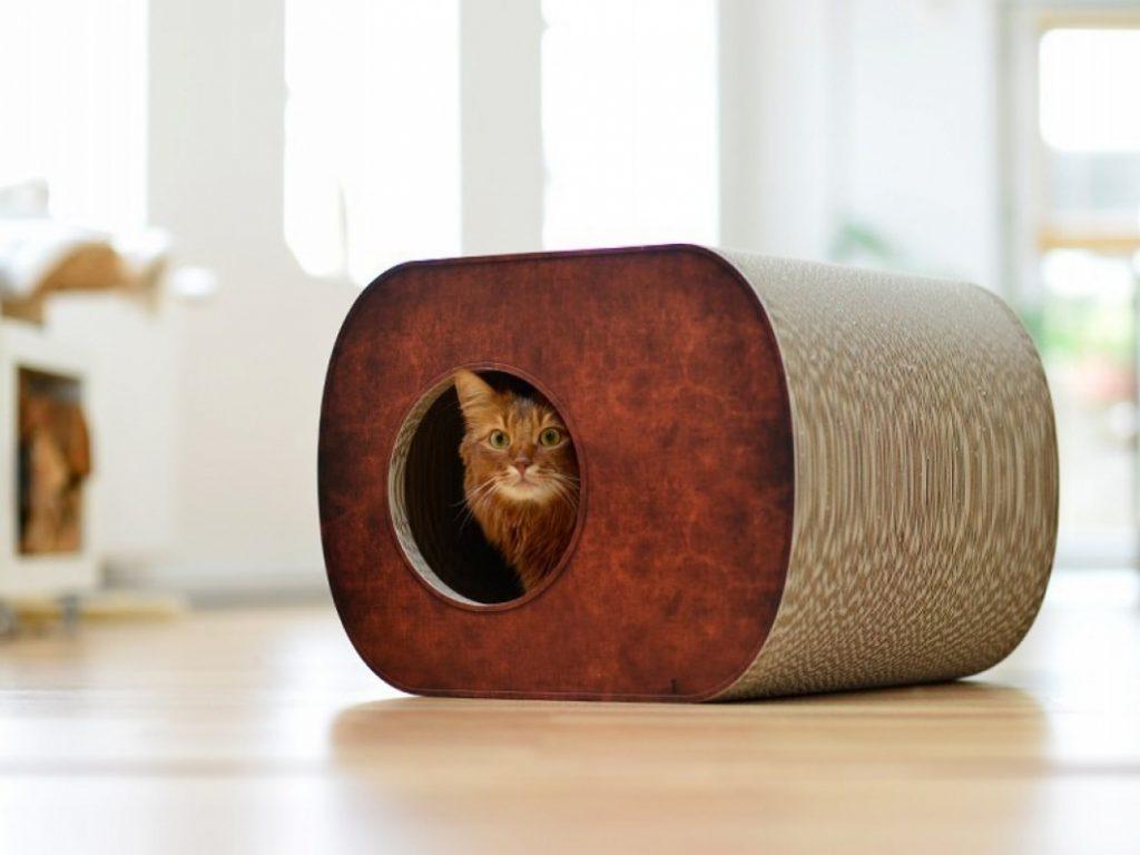 Les soins appropriés pour les animaux comprennent la fourniture d'un abri sûr et confortable