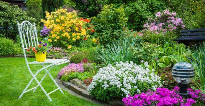 Comment planter des fleurs en 5 étapes faciles pour un jardin plein de couleurs