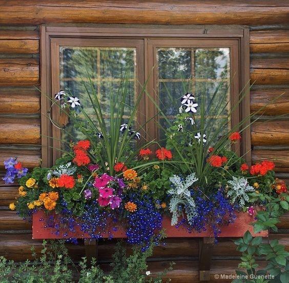 jardin-de-balcon-ombrage1