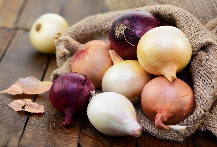 Quelles sont les propriétés bénéfiques des oignons?